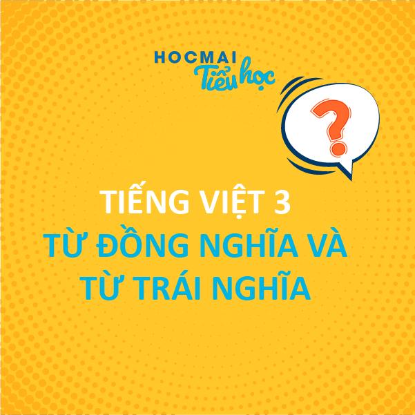 Thành thạo vận dụng từ đồng nghĩa, trái nghĩa – Bí quyết để viết văn hay - Tiếng Việt 3